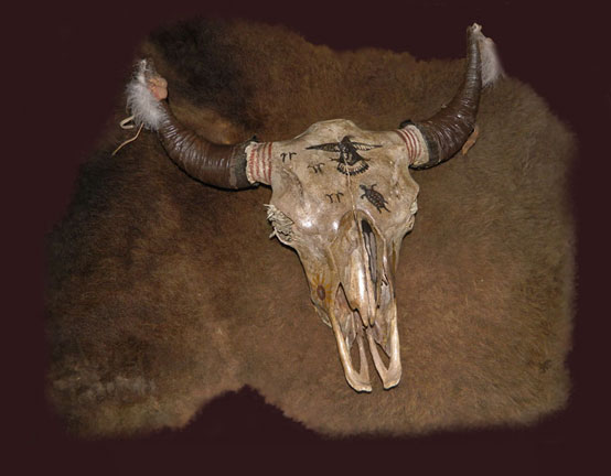 Decorated Plains Indian Buffalo Skull